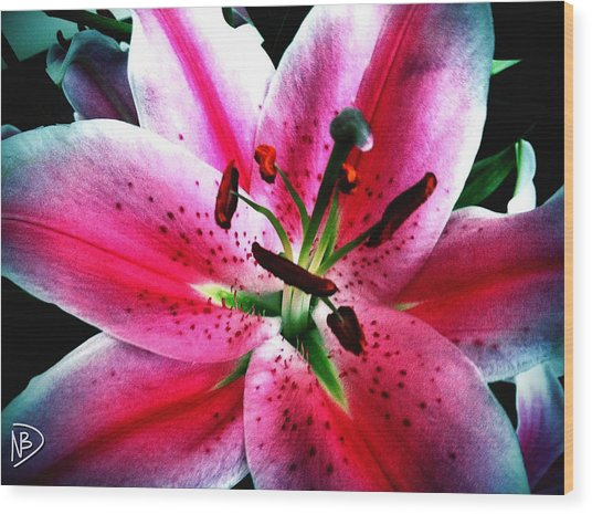 Pink Passion Wood Print