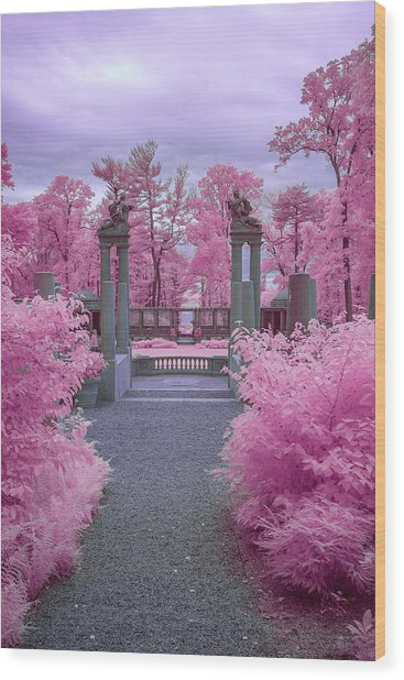 Pink Path To Paradise Wood Print