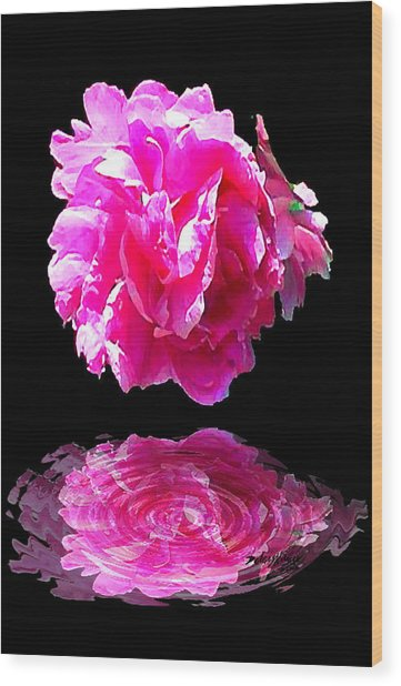 Pink Peony Reflections Wood Print