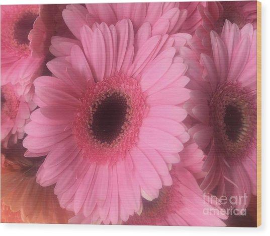 Pink Petals Wood Print