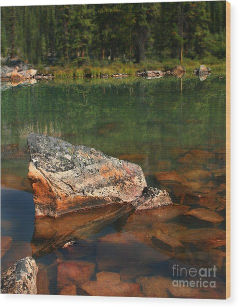 Pink Rocks Wood Print