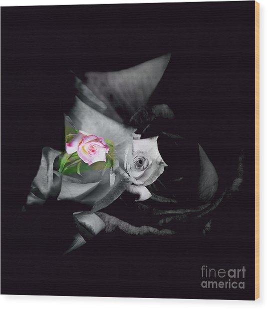 Pink Rose 2 Shades Of Grey Wood Print