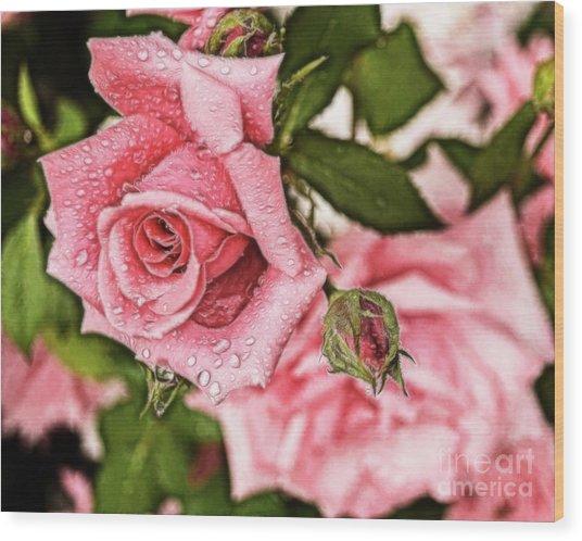 Pink Serenity Wood Print