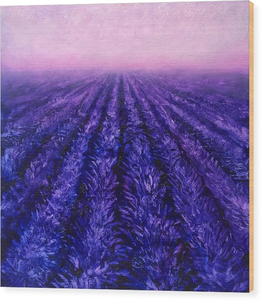 Pink Skies - Lavender Fields Wood Print