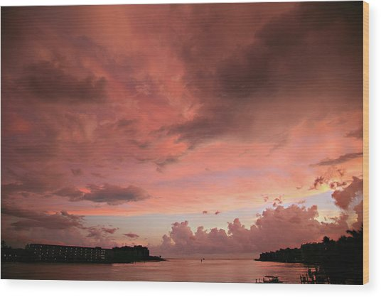 Pink Sky At Night Wood Print