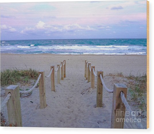 Pink Sunrise Beach Treasure Coast Florida C6 Wood Print