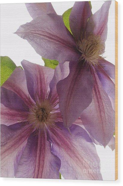 Pink Tenderness Wood Print by Valia Bradshaw