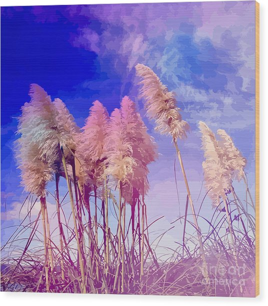Pink Toi Toi Grasses Wood Print