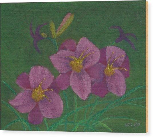 Pink Whispers Wood Print