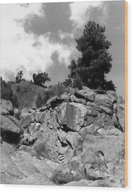 Pinnacle Pine Wood Print