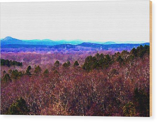 Pinnacle Valley Wood Print by Tom Herrin