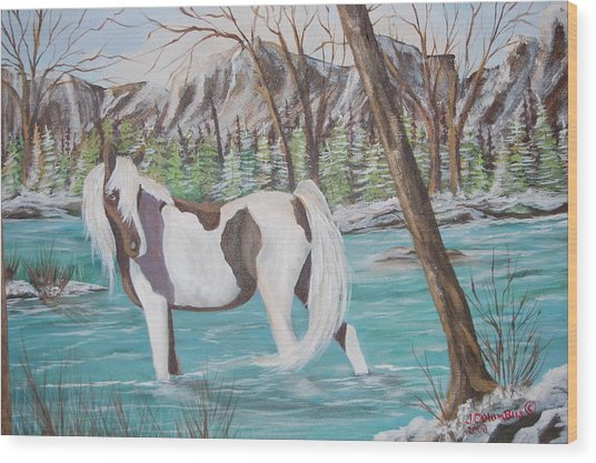 Pinto Cooling Her Heels Wood Print by Janna Columbus