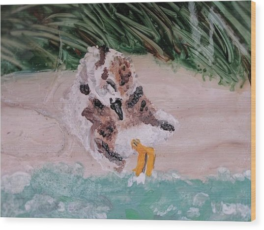 Piping Plover Chick 2 Wood Print
