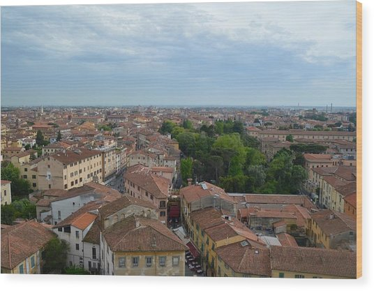 Pisa From Above Wood Print