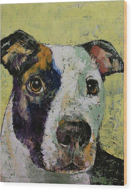 Pit Bull Portrait Wood Print