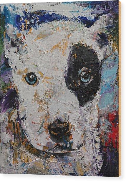 Pit Bull Puppy Wood Print