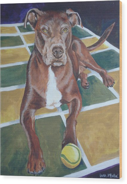 Pit With Ball On Rug Wood Print by Laura Bolle