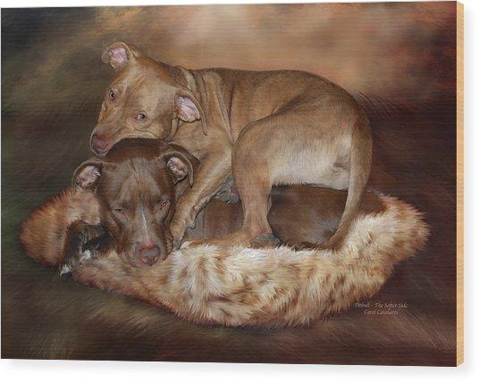 Pitbulls - The Softer Side Wood Print