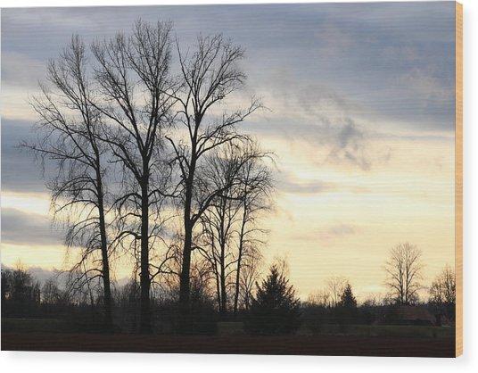 Pitt Meadows Wood Print