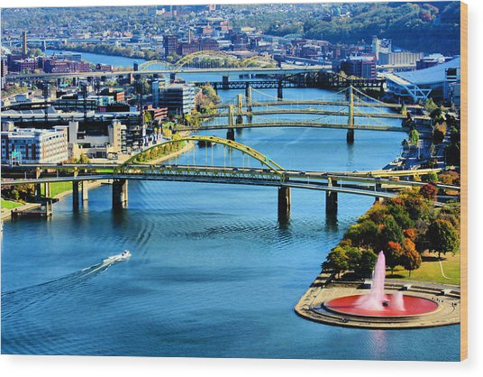Pittsburgh At The Point Wood Print