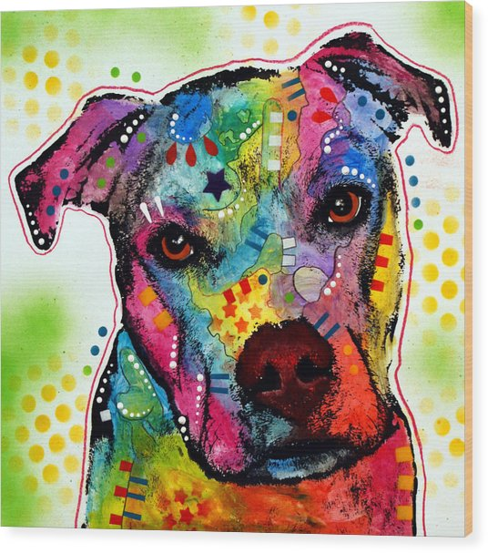 Pity Pitbull Wood Print