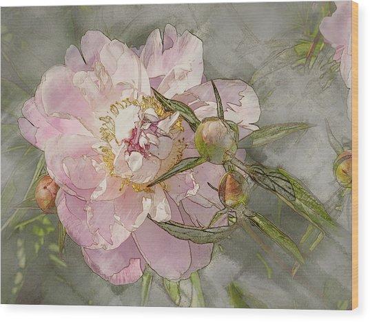 Pivoine Wood Print