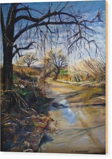 Placerita Creek 1 Wood Print by Olga Kaczmar