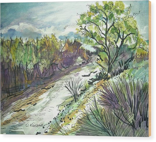 Placerita Creek 3 Wood Print by Olga Kaczmar