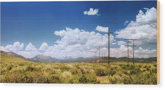 Plains Of The Sierras Wood Print
