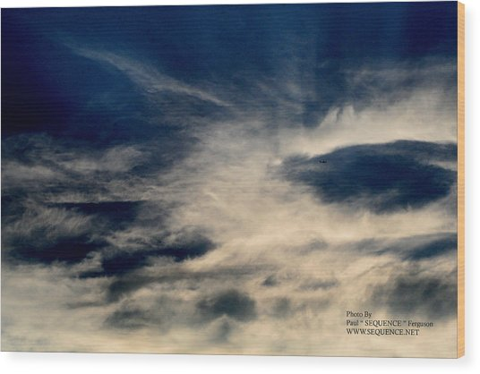 Plane In The Sky Wood Print