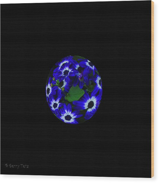 Planet Earth Wood Print