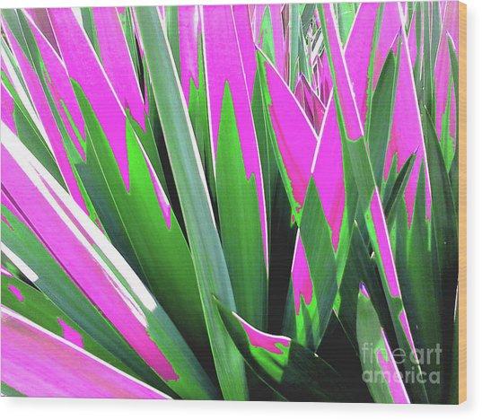 Plant Burst - Pink Wood Print