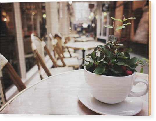 Plant In A Cup In A Cafe Wood Print