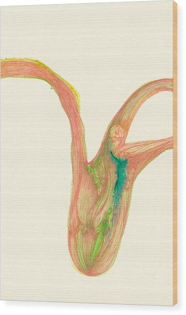 Plant - #ss14dw043 Wood Print by Satomi Sugimoto