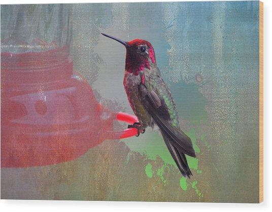 Plate 031 - Hummingbird Grunge Series Wood Print