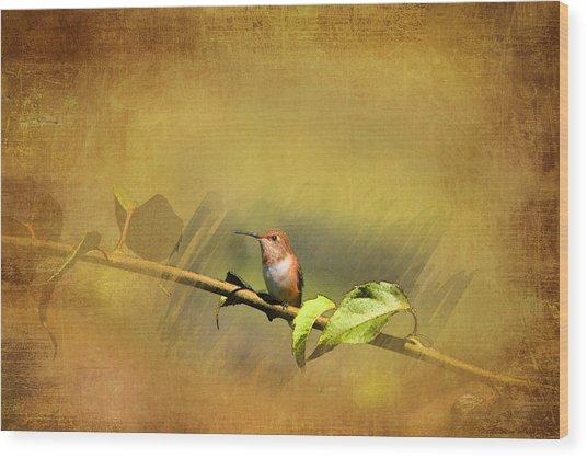 Plate 112 - Hummingbird Grunge Series Wood Print