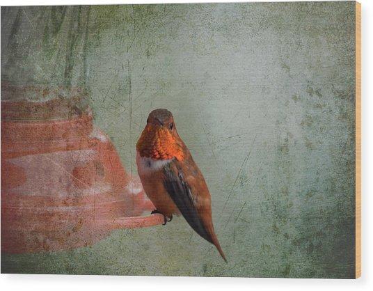 Plate 164 - Hummingbird Grunge Series Wood Print