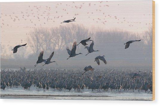 Platte River Morn Wood Print