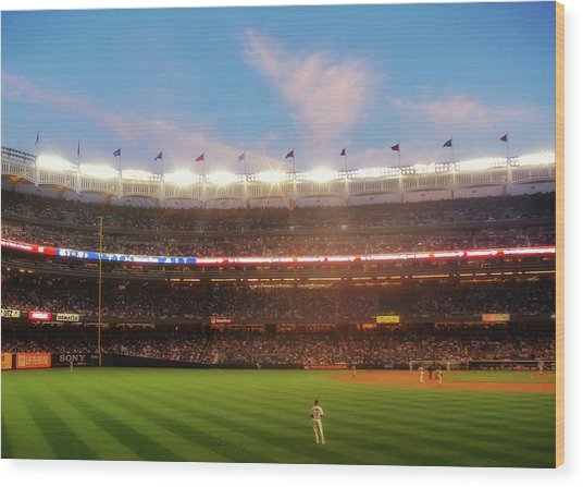 Play Ball Wood Print by JAMART Photography