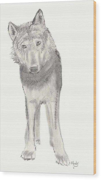 Play With Me Wood Print by Mendy Pedersen