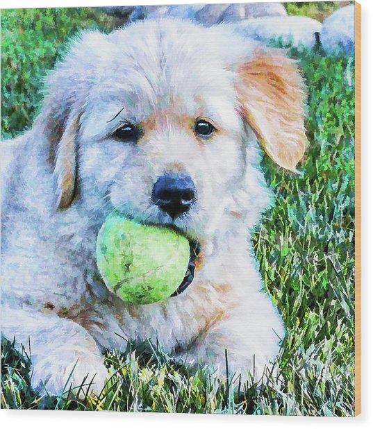 Playful Pup Wood Print
