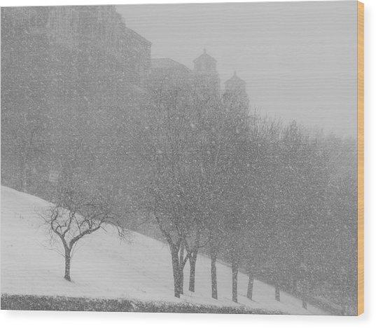 Plaza Impressionism With Kc Snow Wood Print