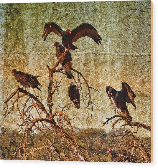Pleasanton Vultures Wood Print