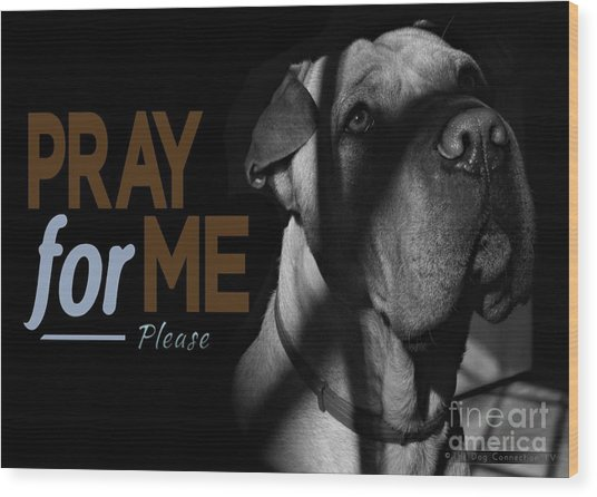 Wood Print featuring the digital art Please Pray For Me by Kathy Tarochione