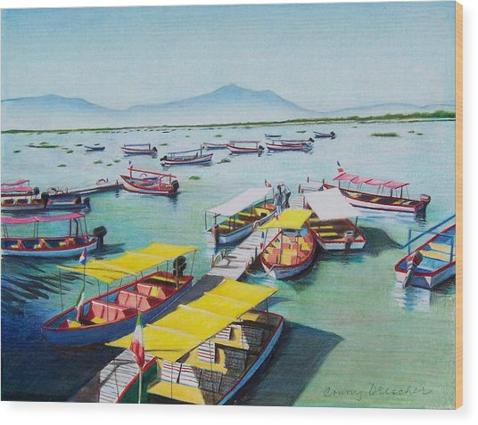 Pleasure Boats On Lake Chapala Wood Print