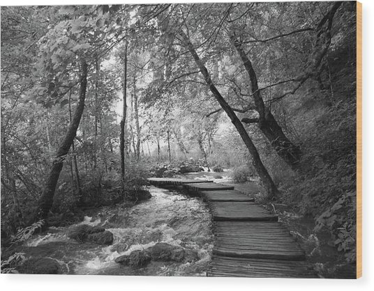 Plitvice In Black And White Wood Print
