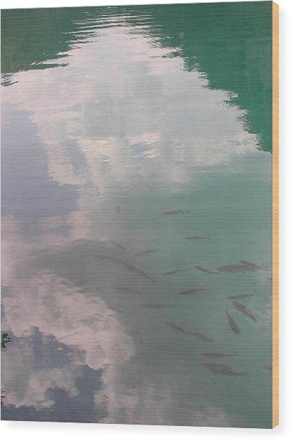 Plitvicelake Wood Print