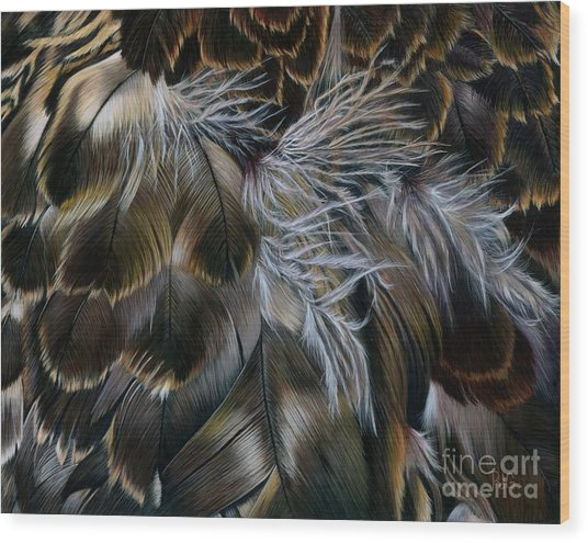 Plumas De Oro Wood Print