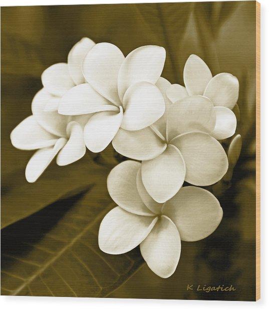 Plumeria - Brown Tones Wood Print