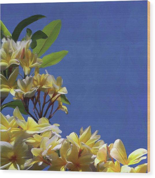 Plumeria_01 Wood Print